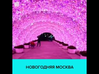 Новогодний тоннель на Никитском бульваре — Москва 24