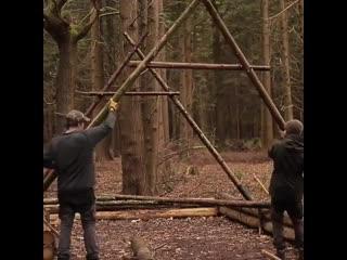 Небольшое пособие о том как построить дом в лесу.