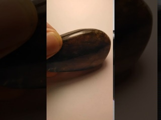 Лот 783, образец лабрадора
