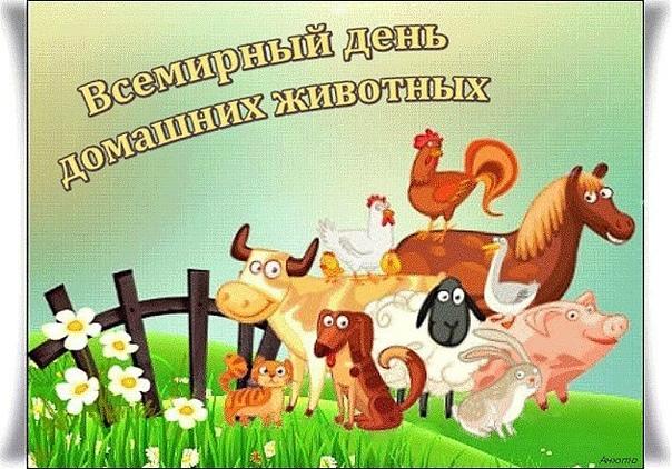 открытки с днем домашних животных мерц