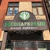 ЖК Лесопарковый, Дом на лесопарковой, Челябинск