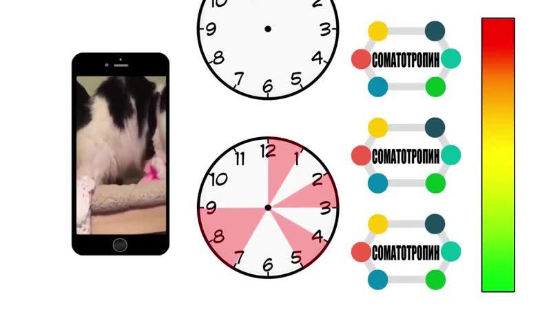 Как Жир Сгорает во Время Сна и Сколько Нужно Спать| Научные данные rfr bh cujhftn dj dhtvz cyf b crjkmrj yeyj cgfnm| yfexyst l