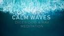 Calm Waves Powerful Didgeridoo RAV Crown Chakra Meditation CalmWhale