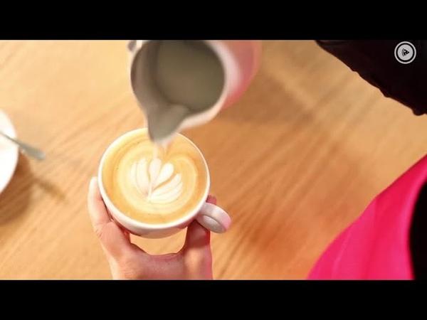 Barista-Tutorial: So gelingt Latte-Art - Milchschaum auch ohne Profi-Maschine