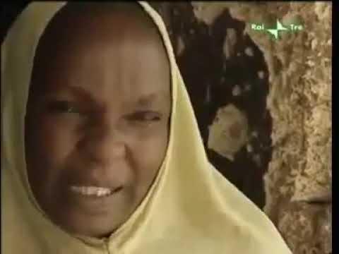 Cavie Umane - Il Contenzioso di Kano - Pfizer, un crimine contro la Nigeria
