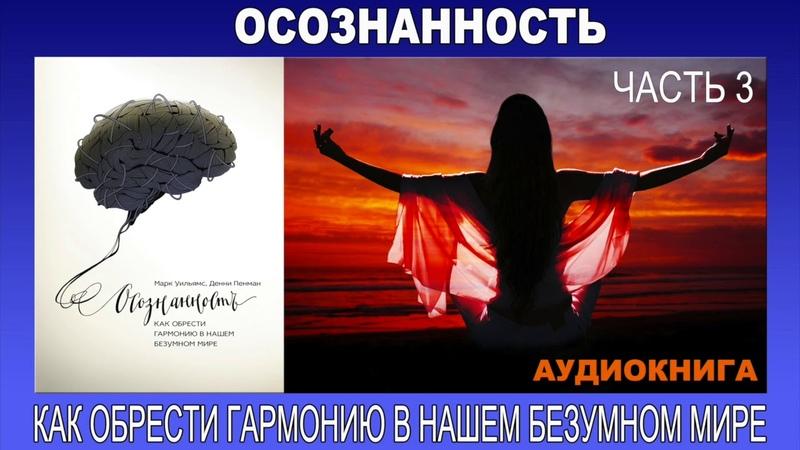 Аудиокнига Осознанность как обрести гармонию в нашем безумном мире Часть 3 3