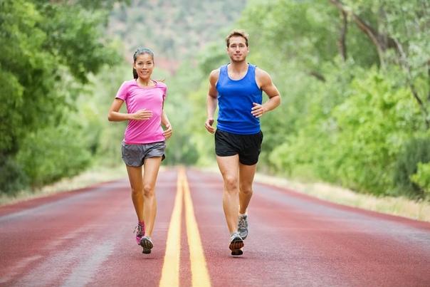 Фитнес-тренировки для похудения, изображение №3
