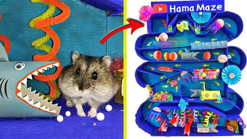Djungarian hamster in the Underwater Maze on the Great Barrier Reef 🐟 HamaMaze