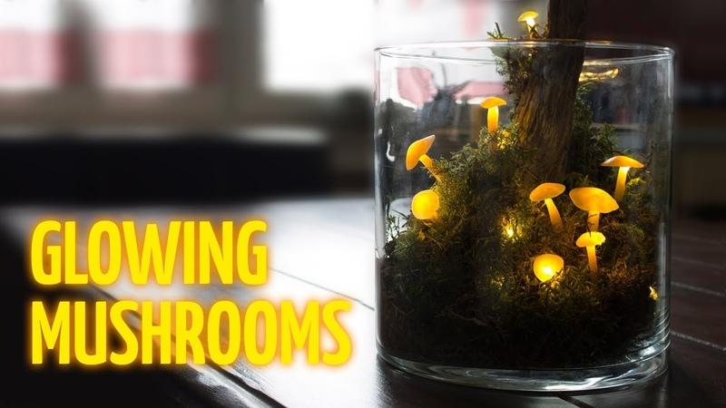 DIY Glowing Mushrooms