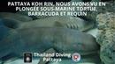 Pattaya koh rin, nous avons vu en plongée sous-marine tortue, barracuda et requin avec Plongée Asie