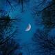 err0ryoure - Лунный свет