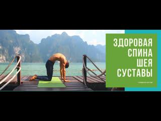 Здоровая спина шея суставы + два бонуса участникам
