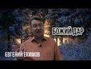 Ф М Достоевский о смысле Рождества Божий Дар