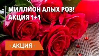 Миллион алых роз ! Акция 1+1! Пышные и ароматные розы