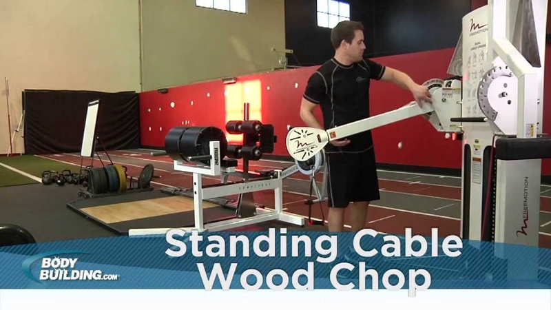 Standing Cable Wood Chop - Core Abs - Bodybuilding.com
