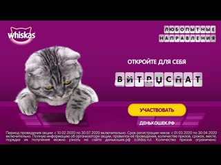 CatDay OLV (April2020) 6 sec rus  4000 kbps
