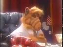 Альфа в президенты (забавный фрагмент из сериала Альф )