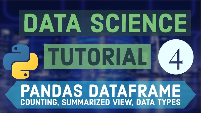 Data Science for Beginners with Python 4 Pandas dataframe Counting Summarized view Data Types