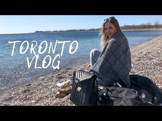 VLOG: Гуляем на пляже, шопимся в HomeSense и кормим белок 🐿️ | Жизнь в Канаде