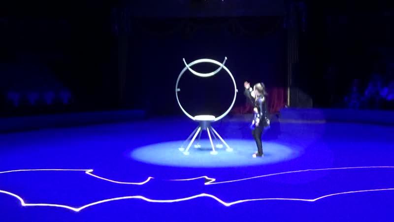 Летучая мышь Тимченко Маргарита 7 лет Танцевально цирковая студия DREAM STEP конкурспризваниеартист