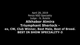 Alkhabor Almira Triumphant Sherlock - BISS-3, ЛПП. Пенза, моно СЕС