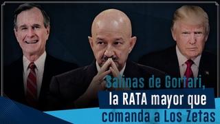 Salinas, La RATA que vendi Mxico y comanda a Los Zetas