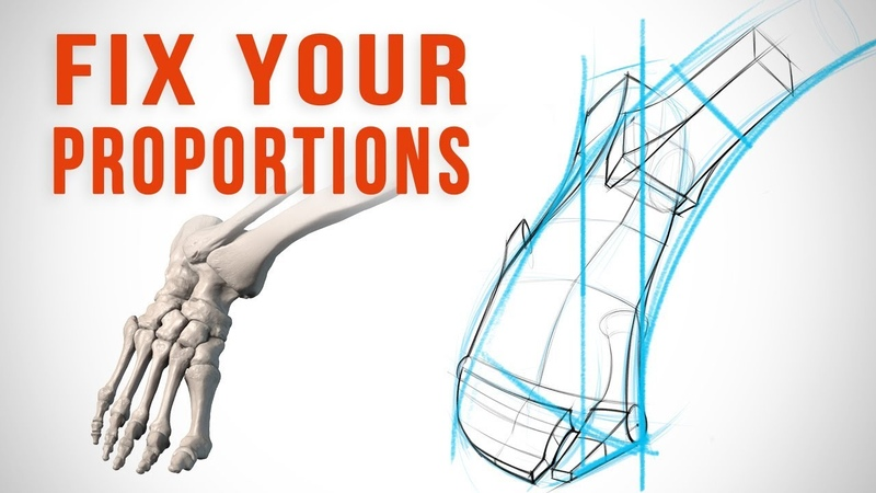 Why Your Proportions are Wrong and How to Fix Them