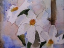 Painting White Flowers in Watercolor- with Chris Petri