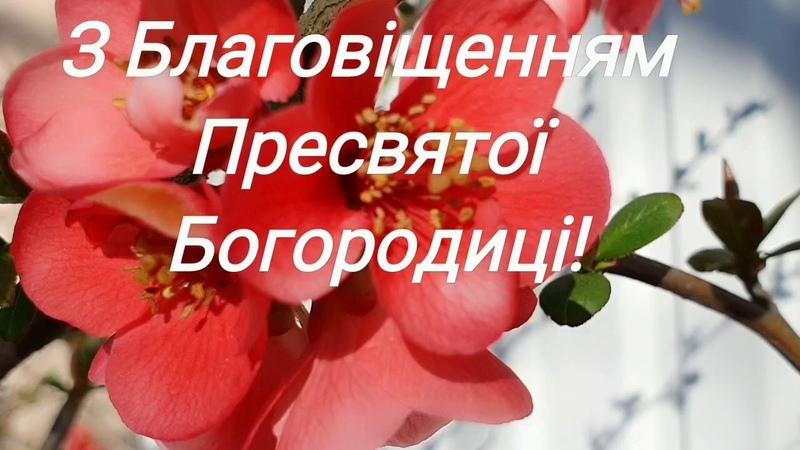 З Благовіщенням Пресвятої Богородиці вітаю Дуже гарне привітання Поздоровлення Благовіщення