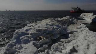 Journey to the Arctic icebraker Baltika/Путешествие в Арктику Балтика 2019