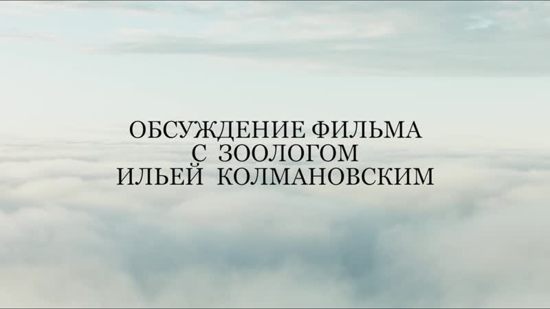 Обсуждение фильма с Ильей Колмановским