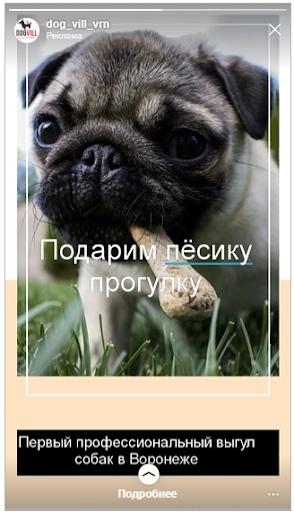 Кейс: продвижение стартапа по выгулу собак, изображение №17