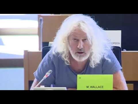 Мик Уоллес член Европарламента из Ирландии обращается к С Тихановской