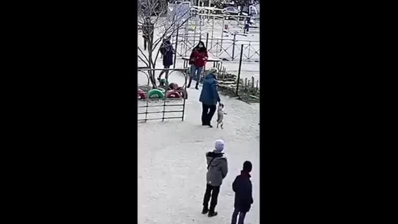 Ребенку брызнули перцовым баллоном в лицо