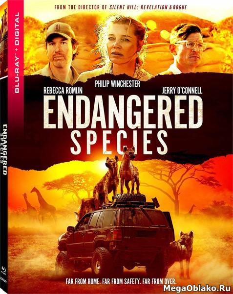 Хищники / Endangered Species (2021/BDRip/HDRip)
