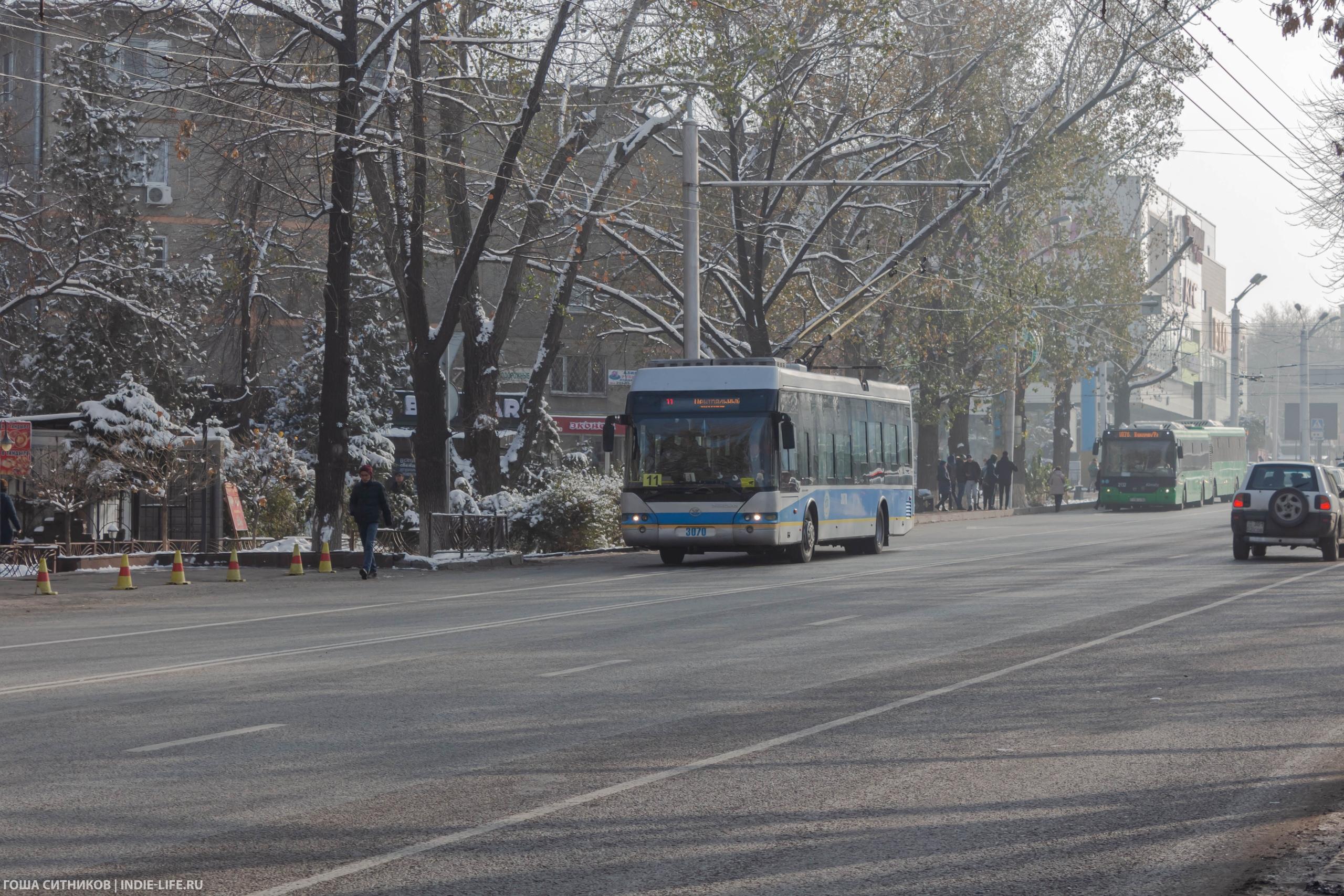 Троллейбус и автобусы