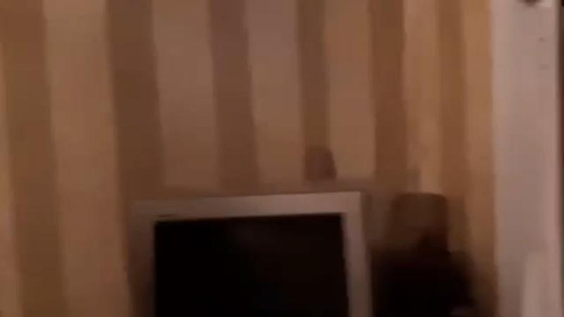 Видео от Кисы Воробьяниновой