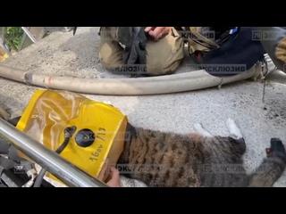 Видео от Регион 78 | Санкт-Петербург
