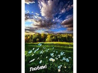 """Видео от СПК """"УСПЕХ"""""""