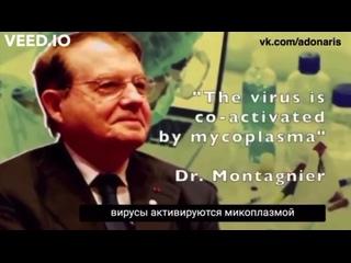 Video by Evgeny Kleptsov