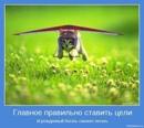 Фотоальбом Марины-Beautiful Львовой