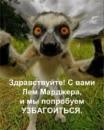 Фотоальбом Дарьи Кадомцевой