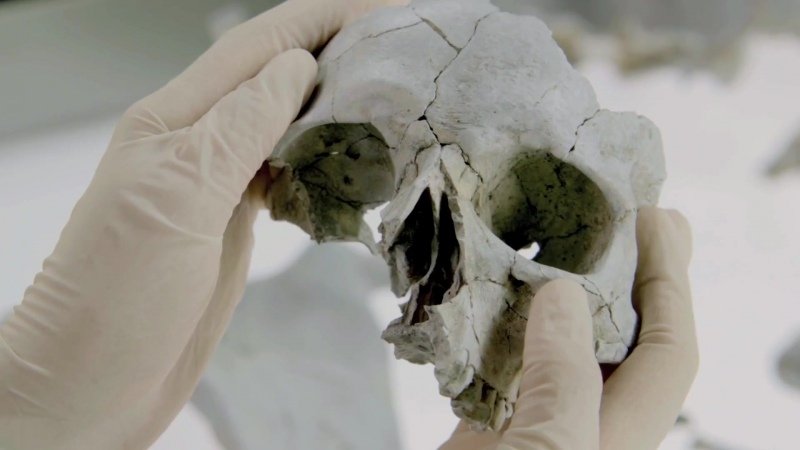 Кости Bones 12 сезон Промо Believing In Fate HD