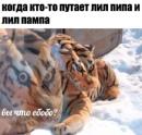 Саенко Александр | Уфа | 20