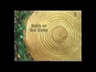 Каннские львы - остановите вырубку лесов