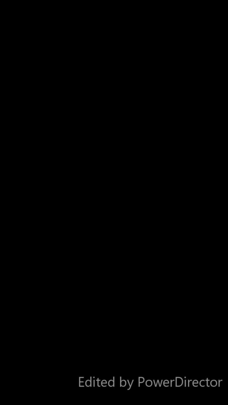Тренажёр Карусель для собак. Стаффордширский бультерьер