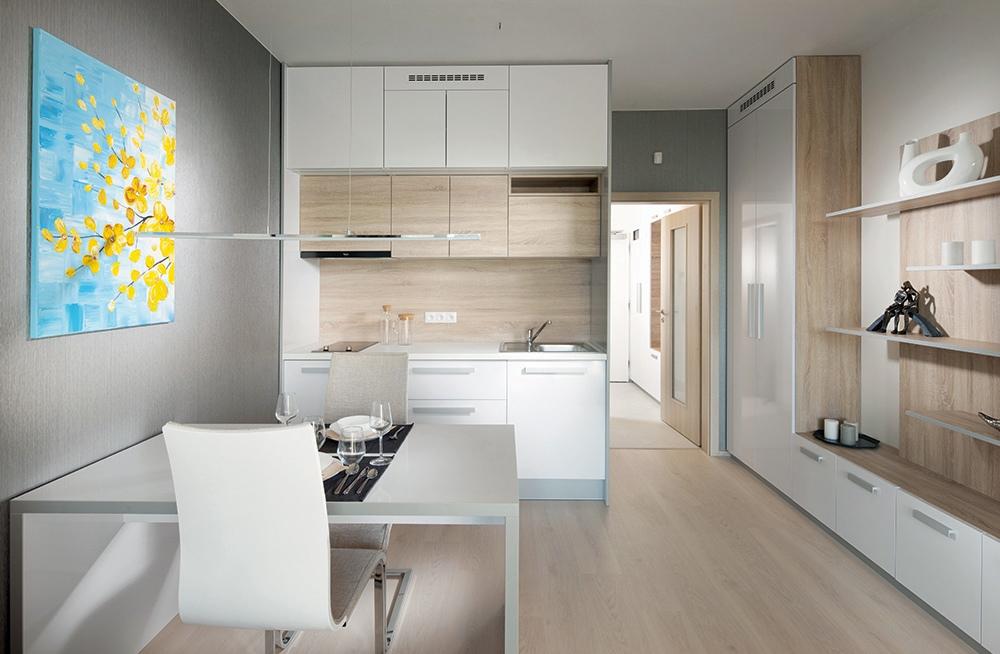 Проект квартиры-студии почти 28 м от чешского застройщика.
