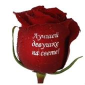 Живые открытки - надписи на цветы