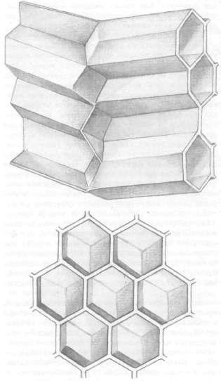 Математика пчелиной ячейки, изображение №13