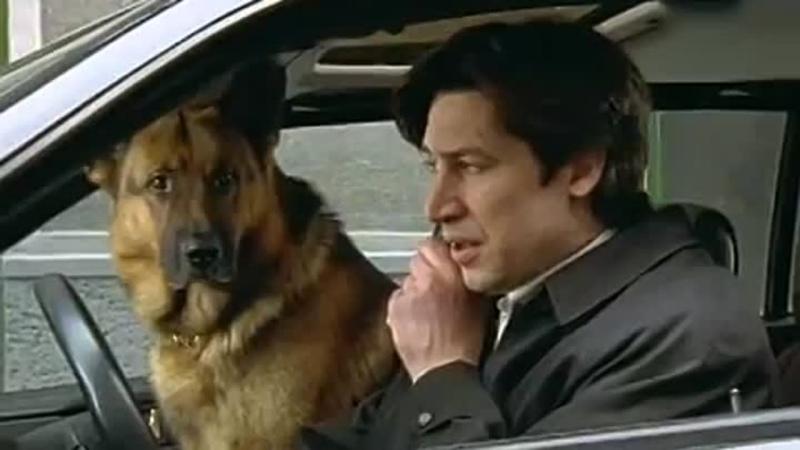 Комиссар Рекс 1996 г 7 12 серию 3 сезон